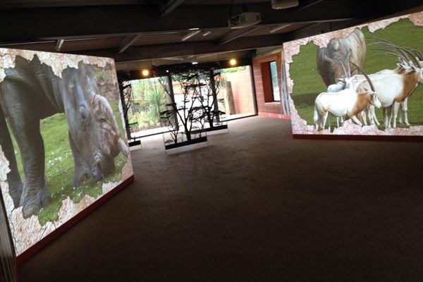 Marwell Zoo interactive