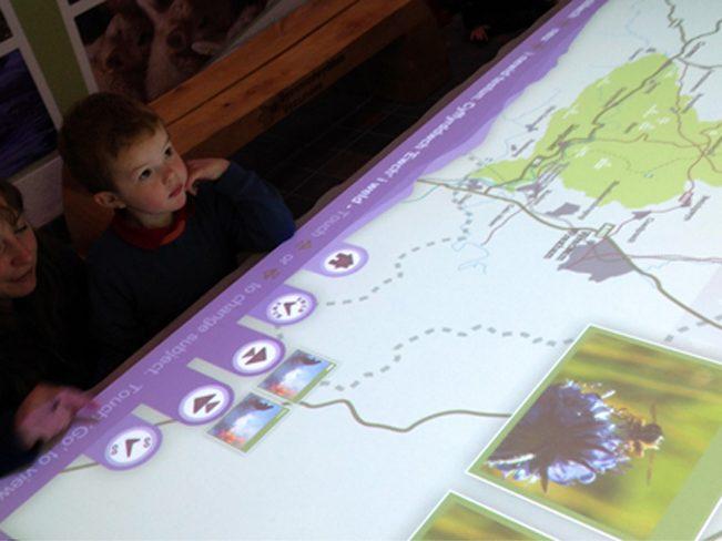 Loggerheads interactive
